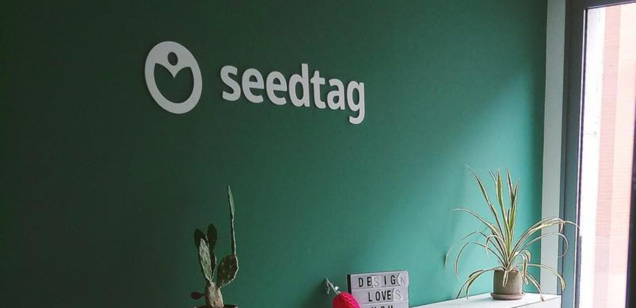 seedtag_business_insider_mexico