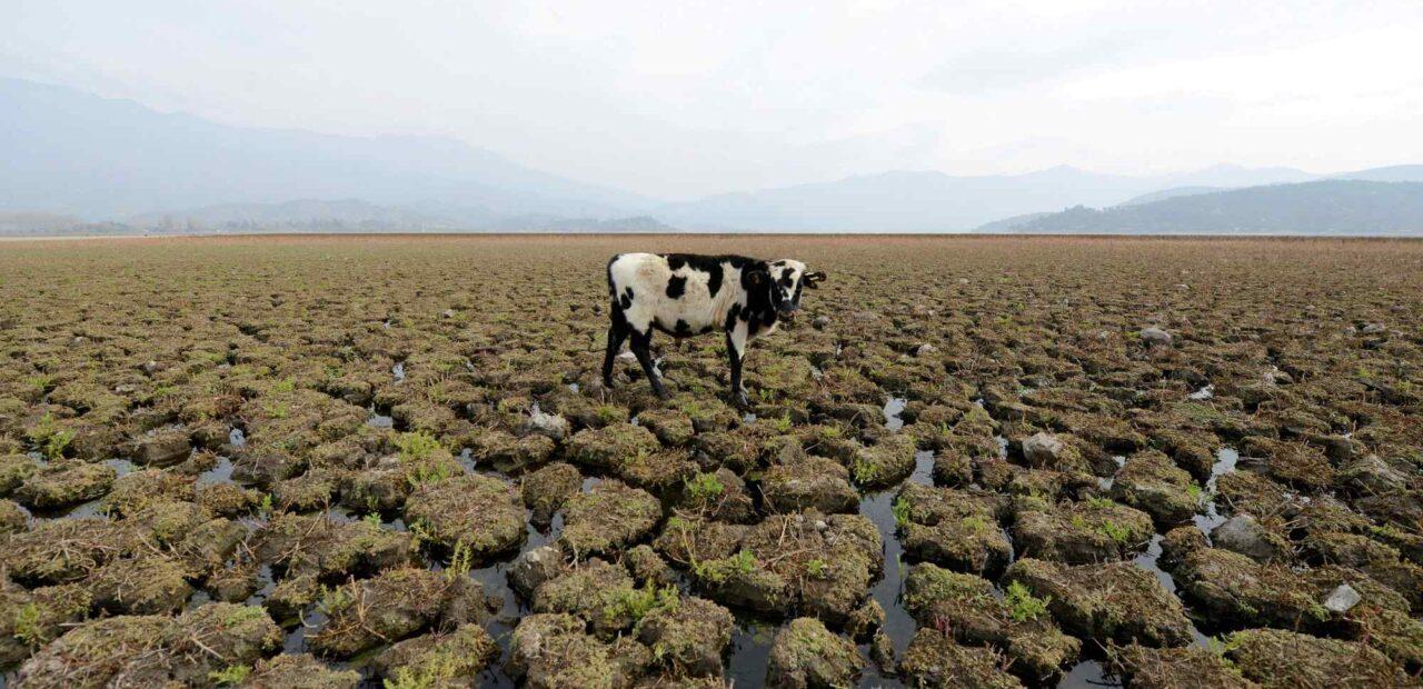 paises_ricos_cambio_climatico |Business Insider México