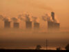 bonos verdes   business insider méxico