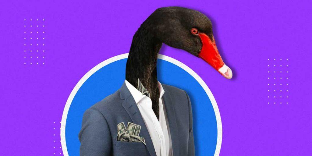 cisnes negros   Business Insider Mexico