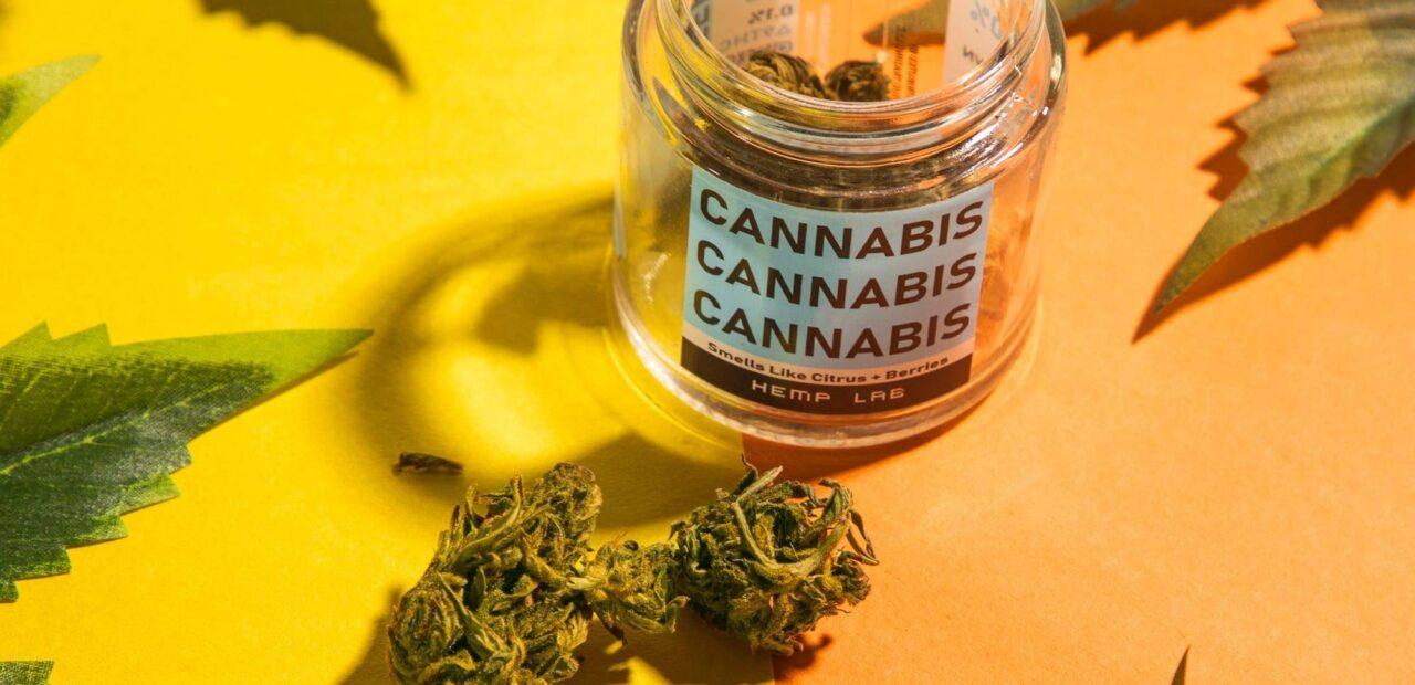 cannabis   Business Insider Mexico
