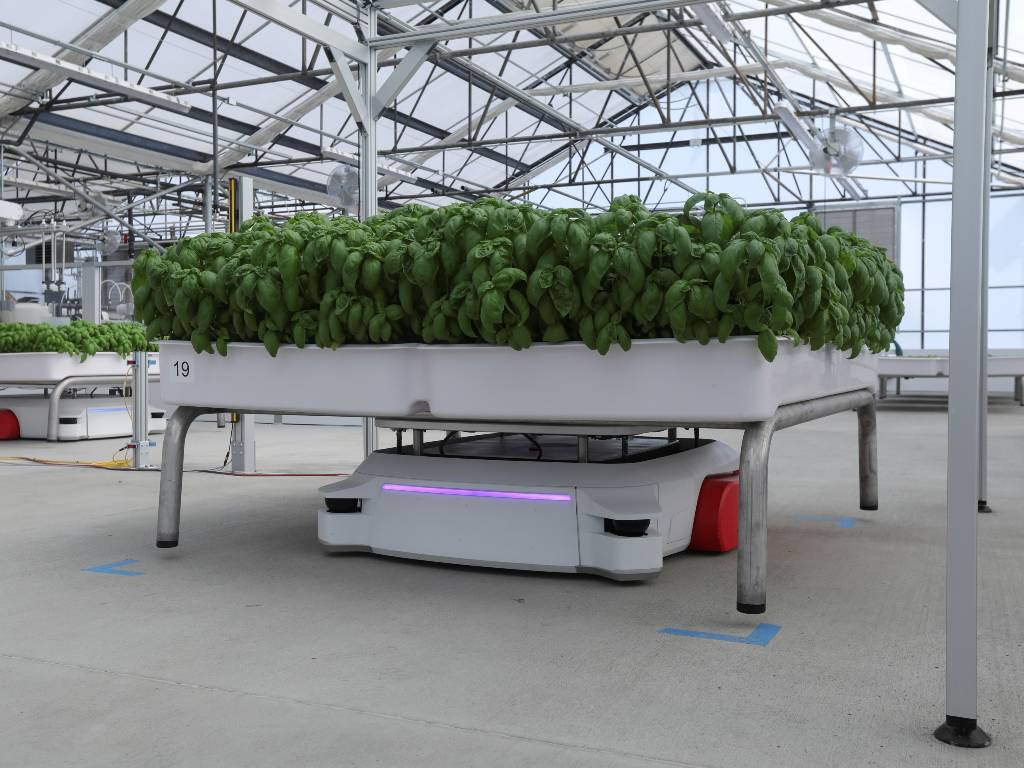 robots agrícolas
