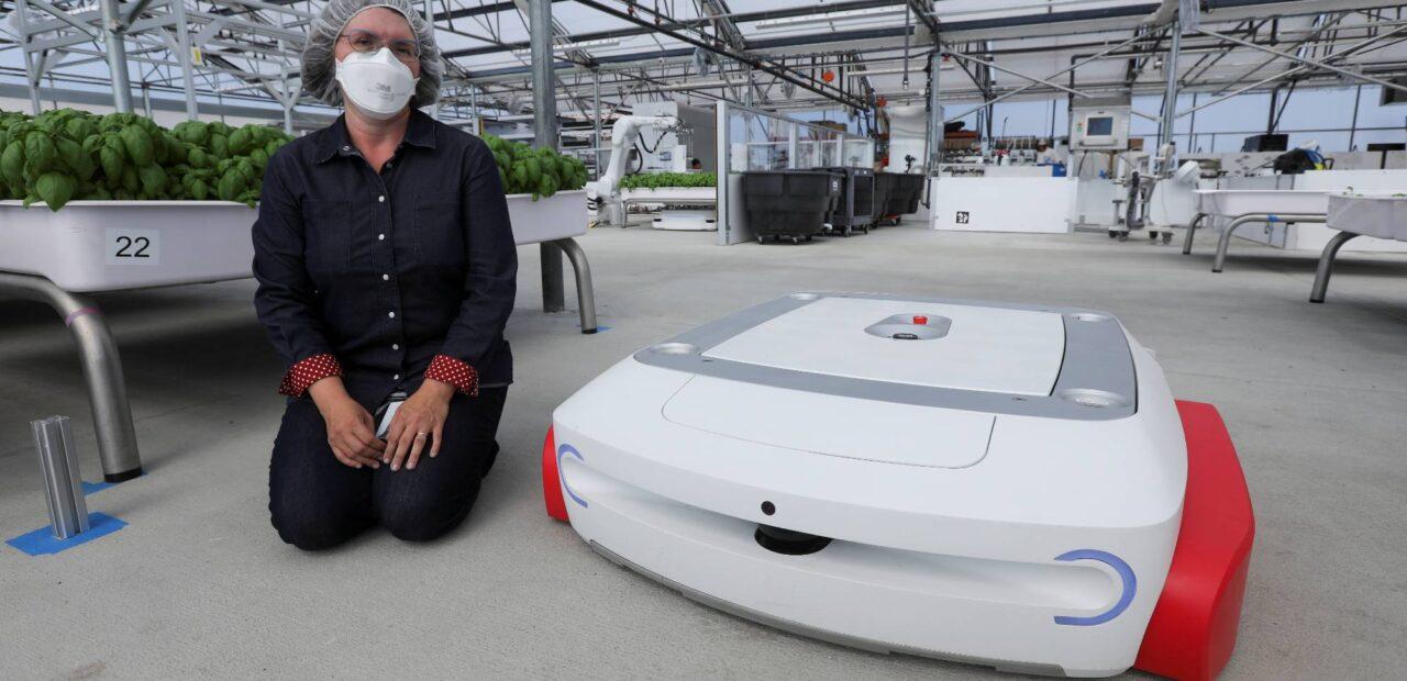 robots agrícolas   Business Insider Mexico