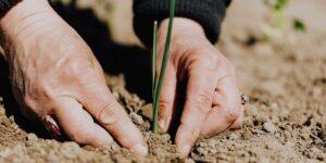 4 claves para que la industria de alimentos reduzca su impacto ambiental