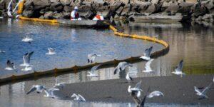 El derrame petrolero en California es una catástrofe ambiental, dice alcaldesa de Huntington Beach