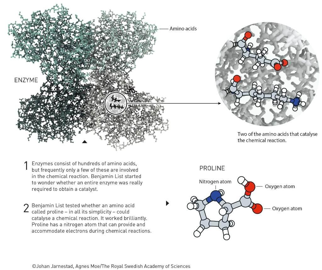 Nobel de Química 2021