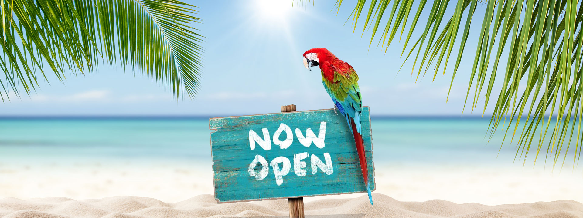 5 oClock Somewhere Bar & Grill Aruba The southernmost Caribbean outpost of our 5 oClock Somewhere brand is now open!