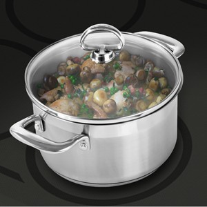 Stainless Steel soup pot chantal induction 21 steel collection premium no nickel non-toxic cookware 2 quart capacity with glass lid brushed exterior in action showing cooking potato and chicken on cooktop