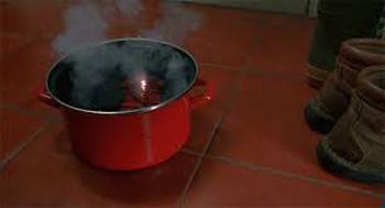 Enamel on steel stock pot in Home Alone