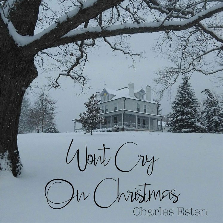 Won't Cry On Christmas
