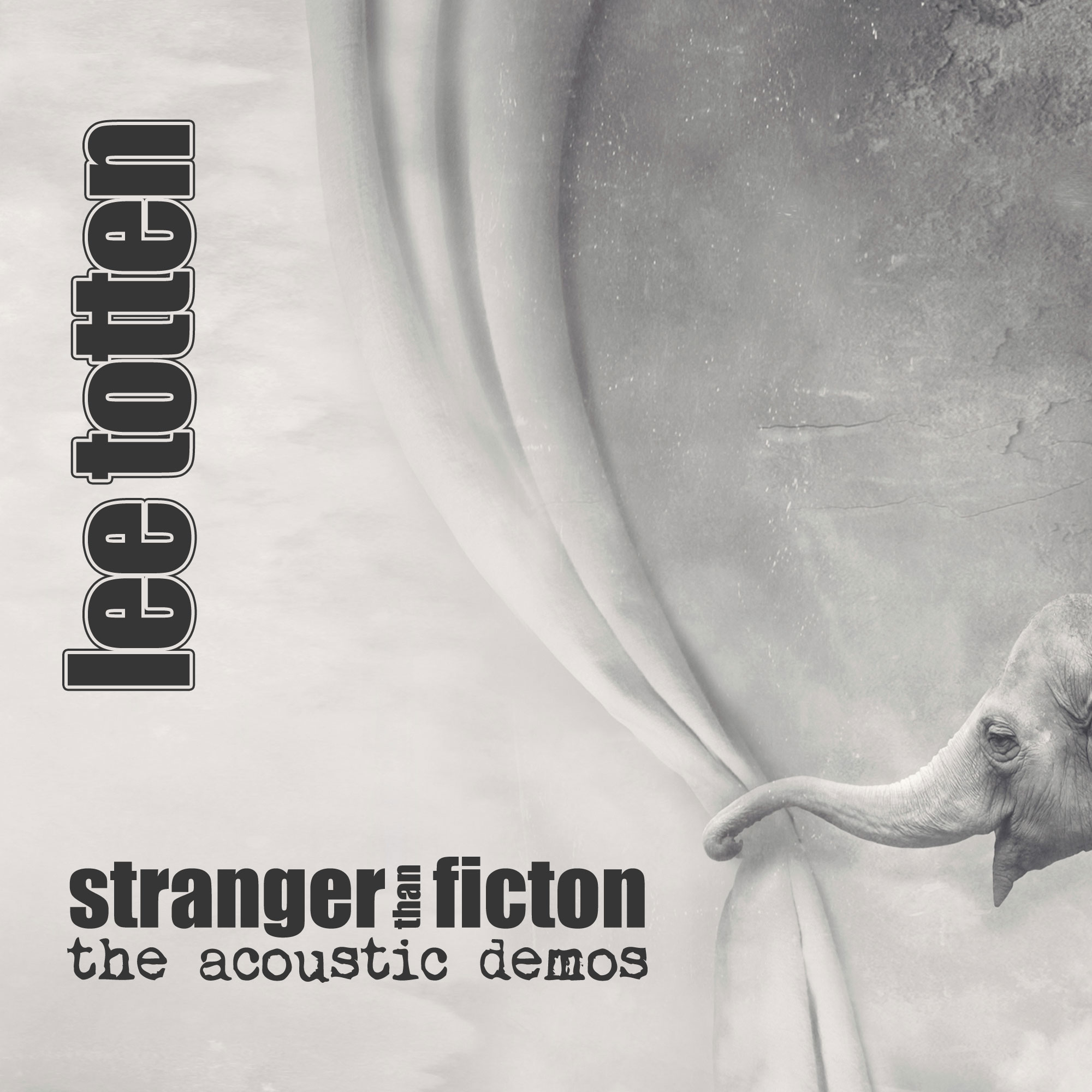 Stranger Than Fiction (the acoustic demos)
