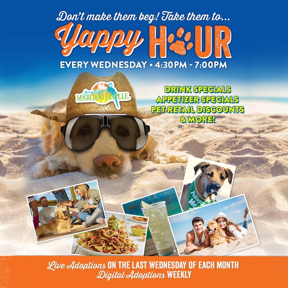 4:30-7:00pm : Yappy Hour | Cleveland, OH | Jimmy Buffett's