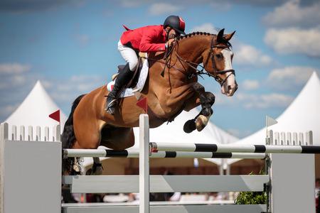 19th Annual Gulf Coast Winter Classics Horse Show