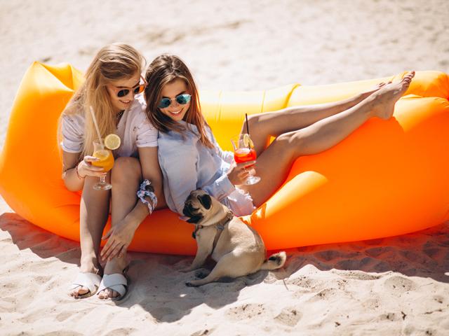 Pet Friendly Hotel Biloxi
