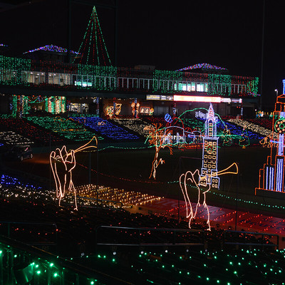 DSC_0344.jpg - Photo Gallery Sugar Land Holiday Lights