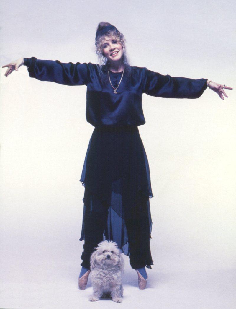 Image Result For Stevie Nicks