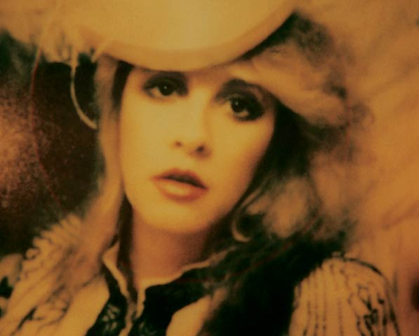 about stevie nicks