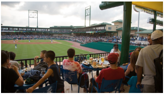 Sugar Land Skeeters Picnic Area