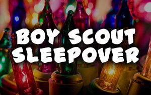 Sugar Land Holiday Lights - Boy Scout Sleepover