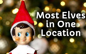 Sugar Land Holiday Lights - Most Elves in One Location