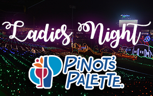 Sugar Land Holiday Lights - Ladies Night & Pinot's Palette