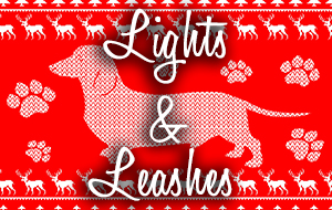 Sugar Land Holiday Lights - Lights & Leashes