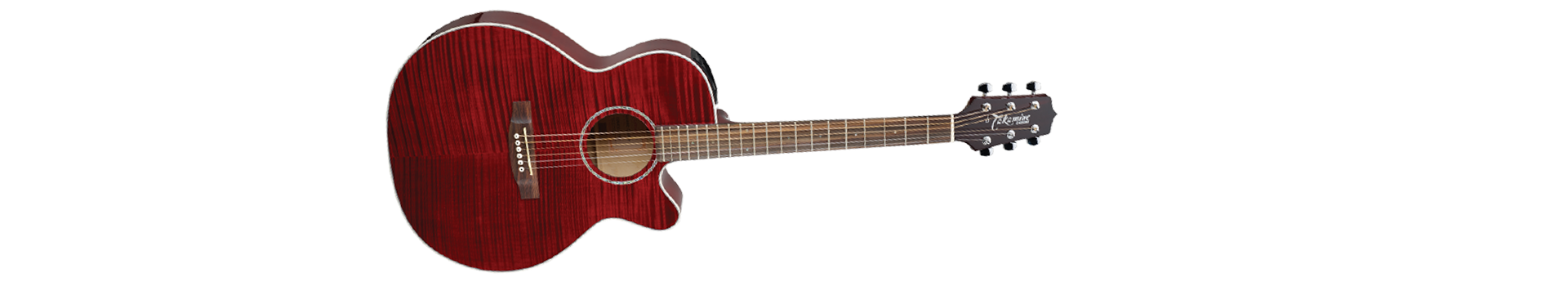 Takamine Guitars Product Details