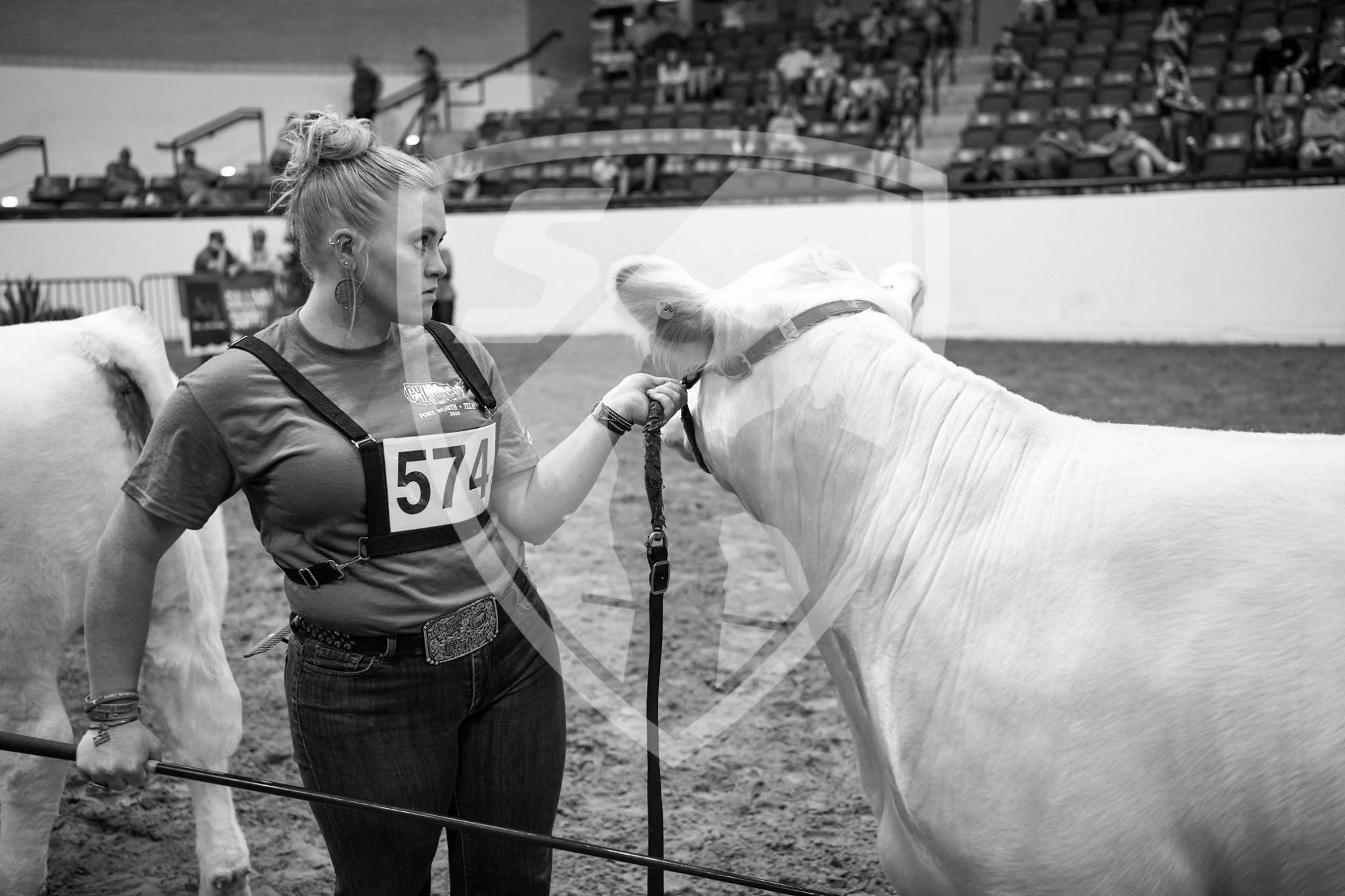 Girl and bull