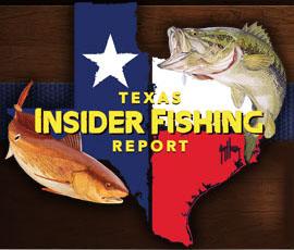 Texas Insider