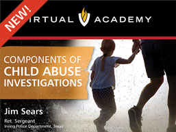 Components of Child Abuse Investigations