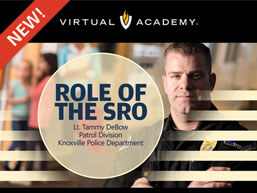 The Role of the SRO