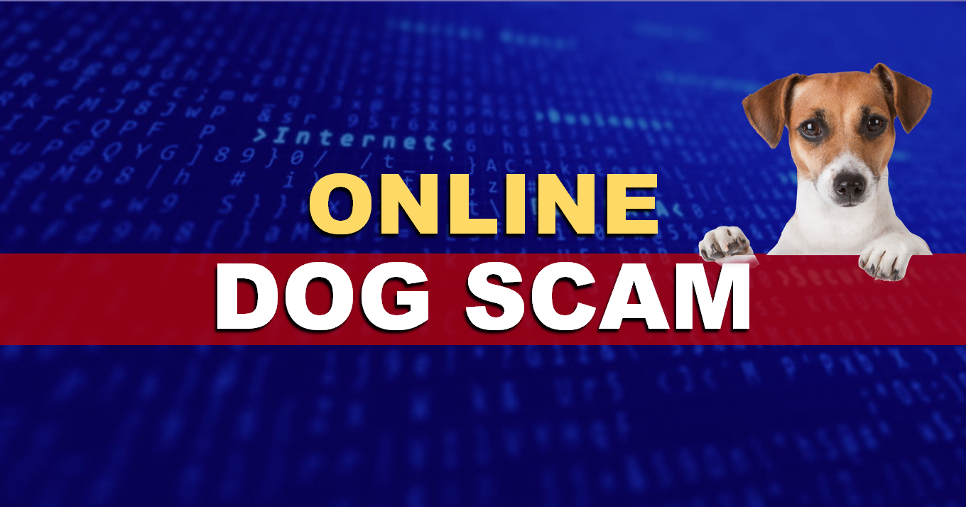 SCAM ALERT: Indiana State Police Warn Residents About Online Dog Scam