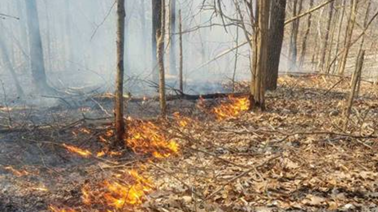 Hoosier National Forest and Eastern Region Report Record Year Preventing Wildfires