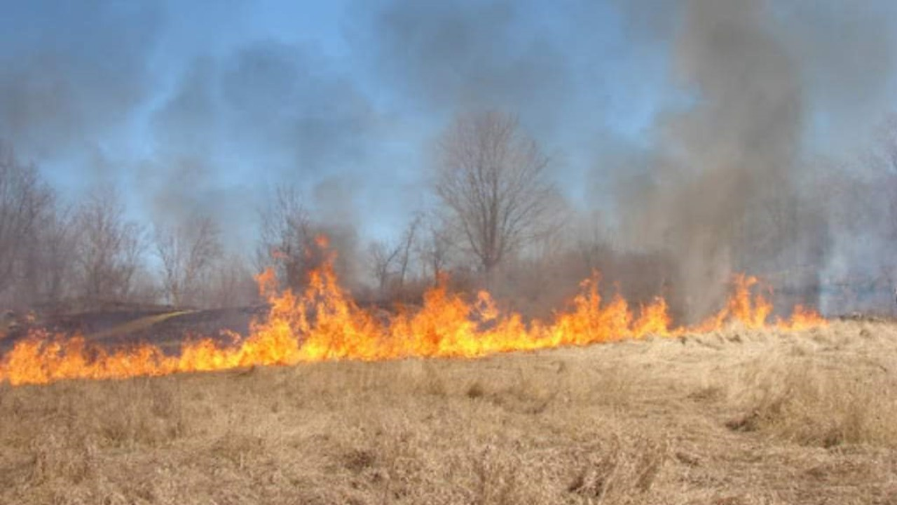 Area Firefighters Spent Sunday Trying to Contain Four Separate Brush Fires