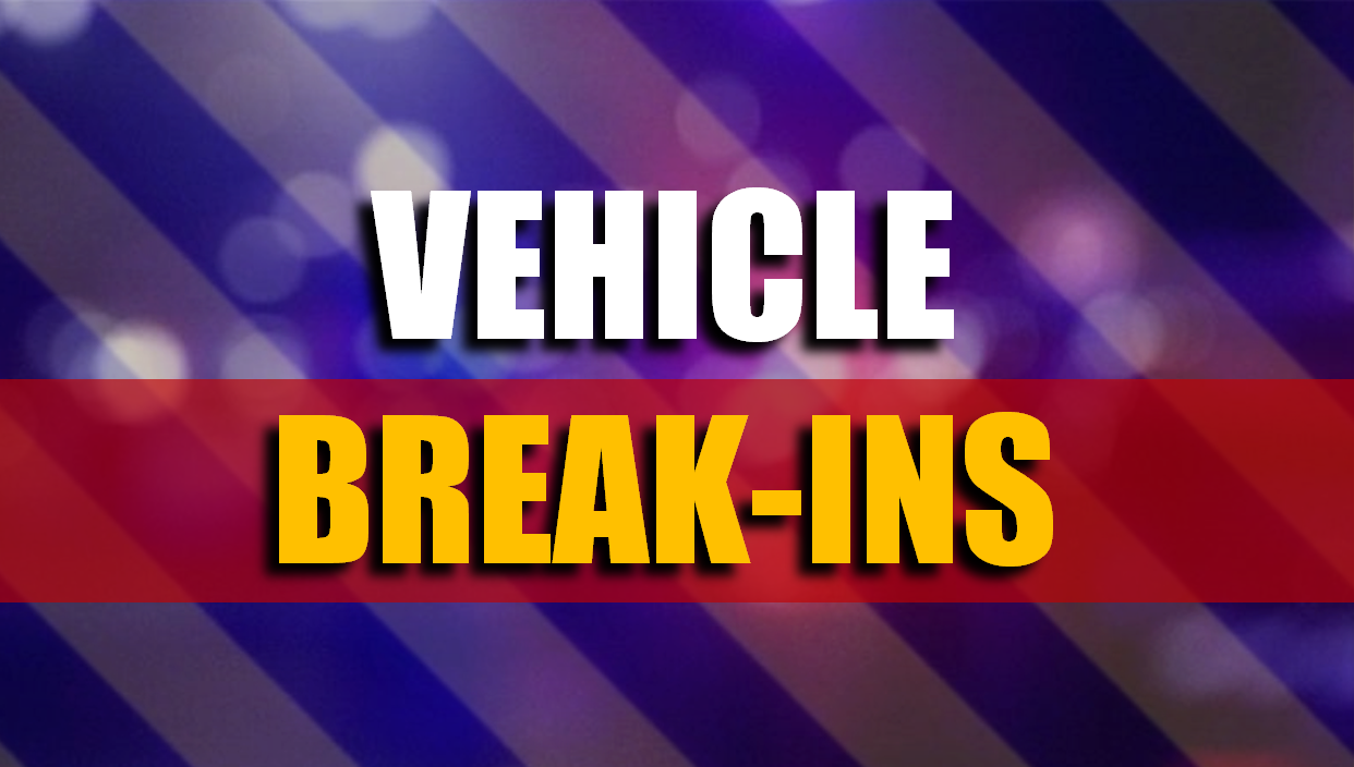 THEFT WARNING: Jasper Police Received Over 25 Reports of Vehicle Break-Ins Over the Past Month