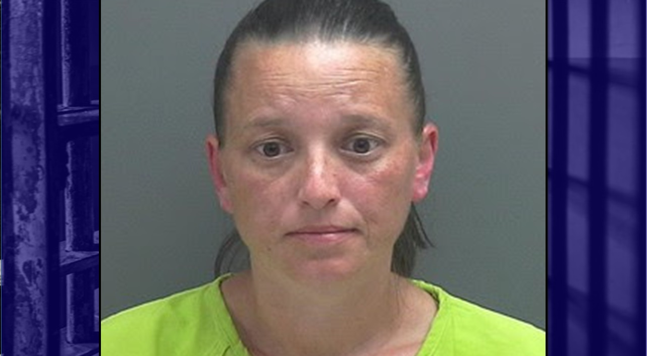 Fake Email Accounts and Hundreds of Text Messages Land Area Woman in Jail on Harassment Charges