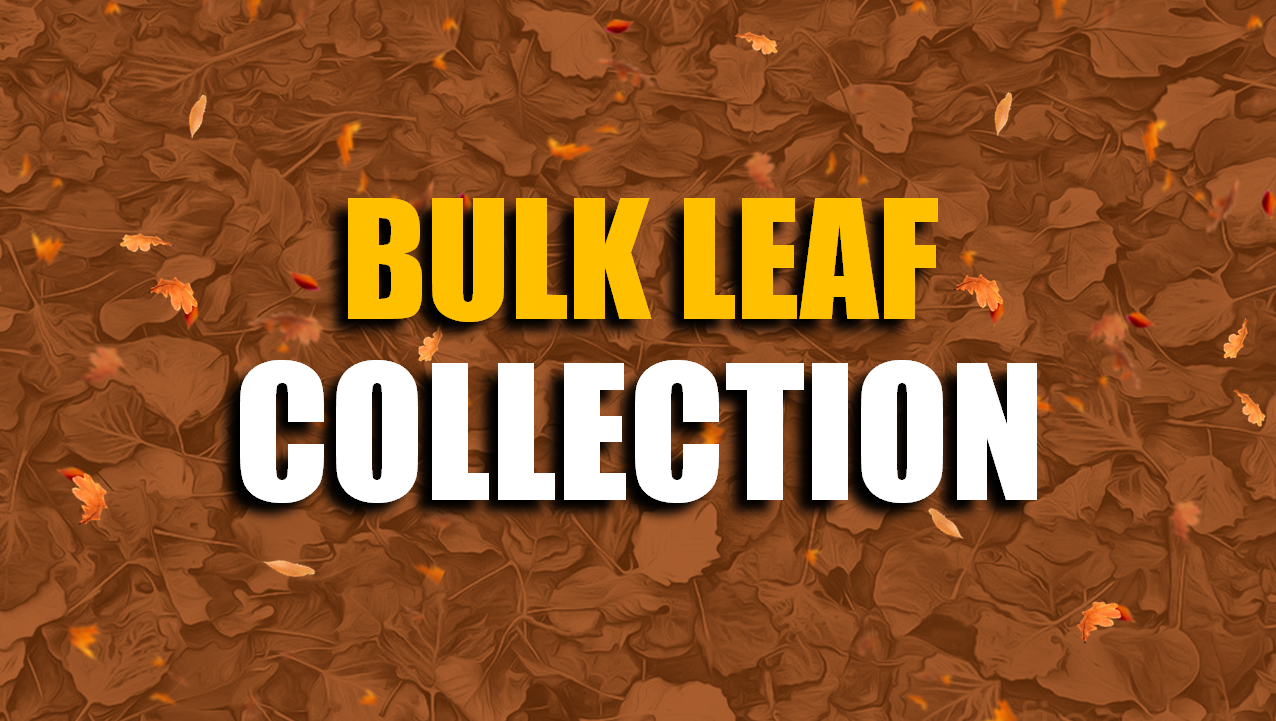 Jasper Street Department Begins Bulk Leaf Collection Monday