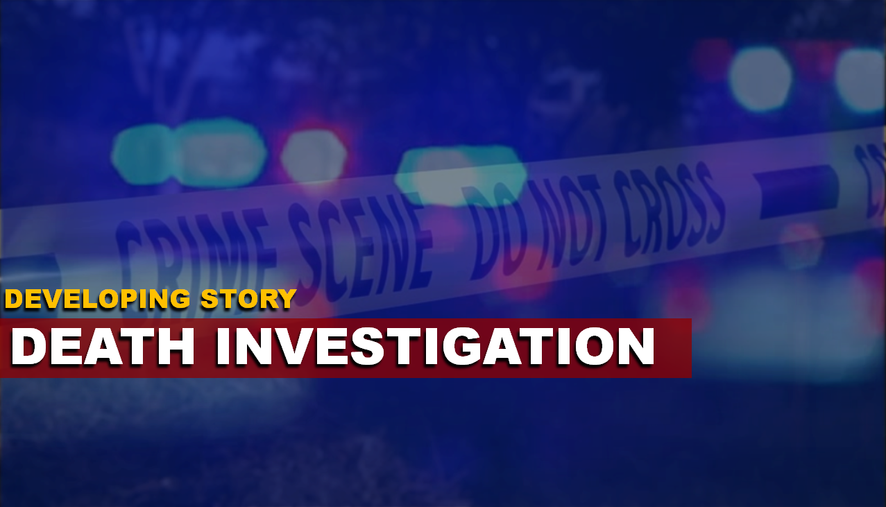 Resident Discovers Human Remains Along Hawkins Creek, Death Investigation Now Underway
