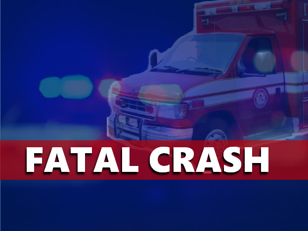 Elderly Man Killed in Warrick County Crash
