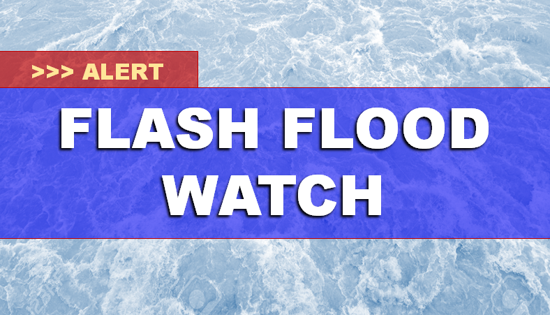 FLASH FLOOD WATCH Saturday - Sunday P.M. as Gordon Moves Through The Area