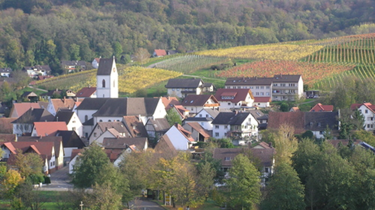 Seats Available For 35th Anniversary Sister Cities Partnership Trip to Pfaffenweiler, Germany