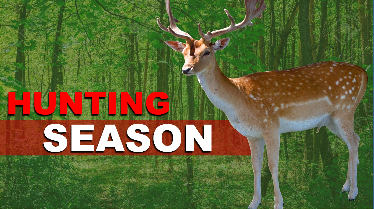 It's Firearm Season: What the Indiana DNR Wants You to Know Before You Hunt