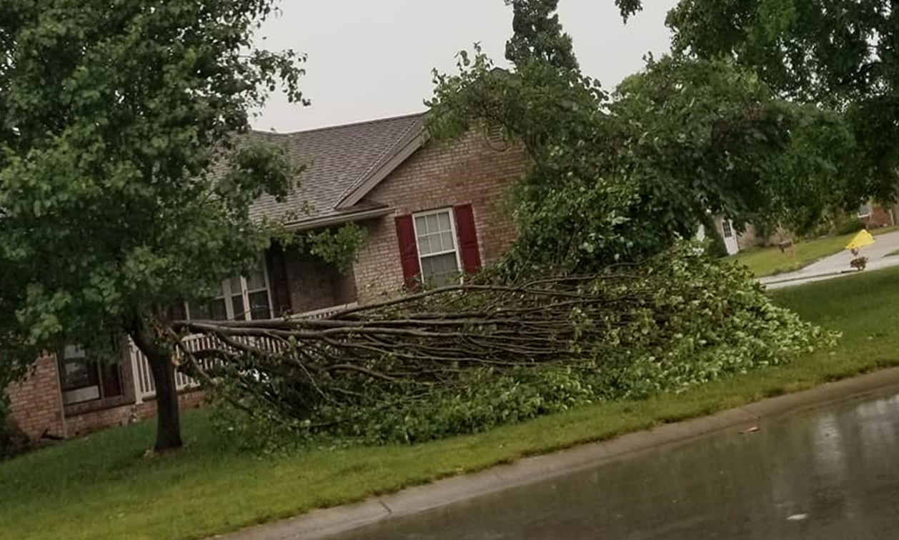 PHOTOS:  Local Storm Damage