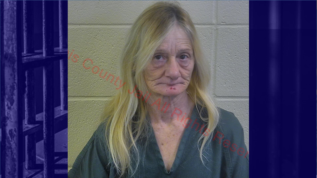 Jasper Woman Faces Felony Theft Charges; Found Wearing Shirt With Store Tags Still Attached