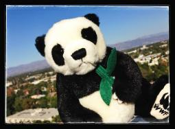 Win a panda plush in celebration of Santorini!
