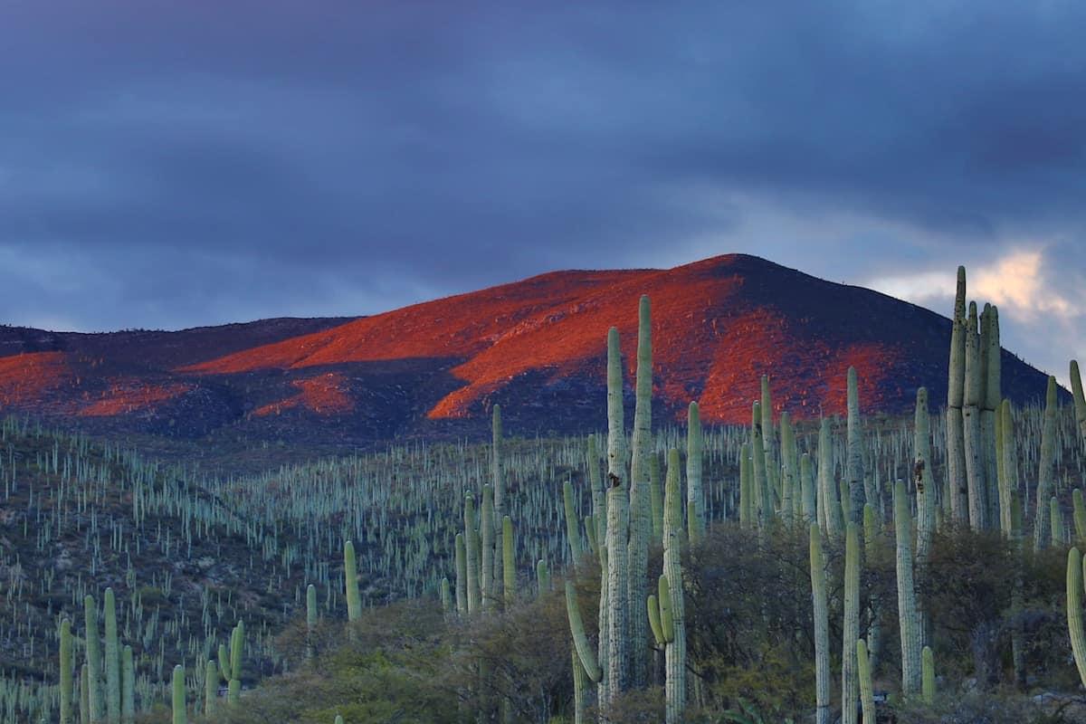 18 destinos impresionantes de México para viajar en 2019