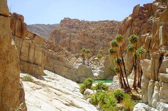 Cataviña: el Oasis en medio del desierto de Baja California - Busolinea