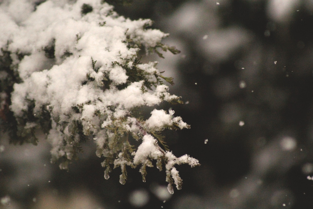BUSOLINEA - Los cinco destinos con nieve en México
