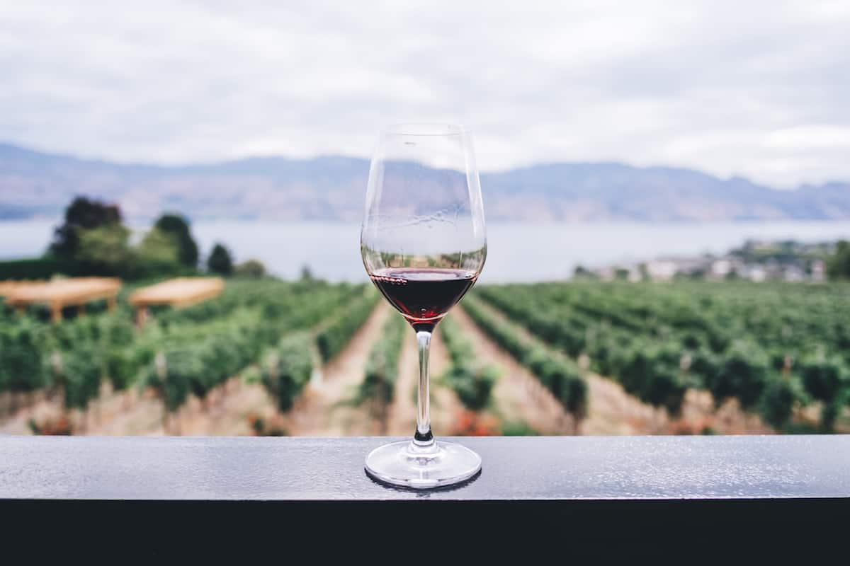 La Ruta del Vino en Baja California