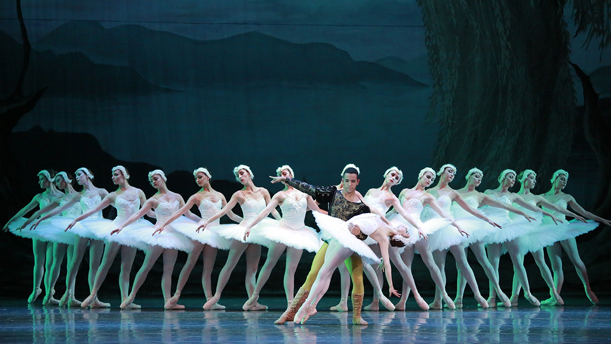 CANCELED: Swan Lake